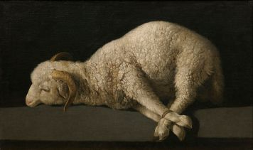 Francisco Zurbarán. Agnus Dei, ca. 1635–1640, Museo del Prado