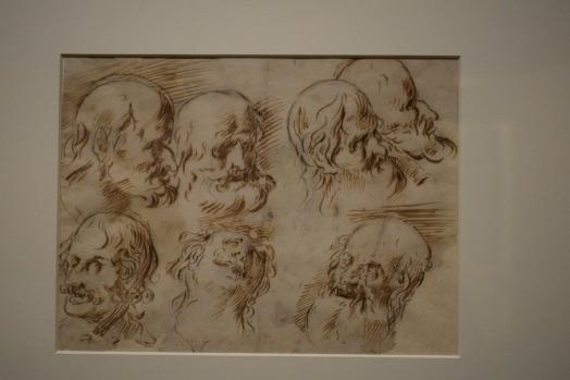Estudio de cabezas. Museo de Bellas Artes de Córdoba